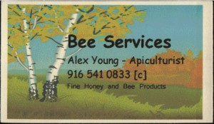 Bee_Services